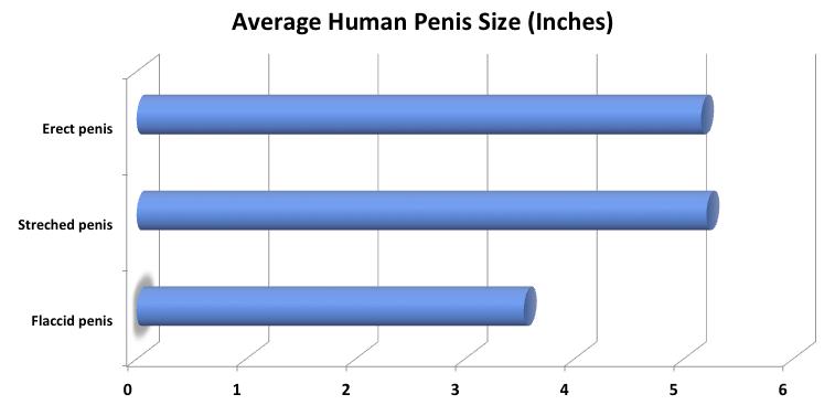 probléma a pénisz növekedésével