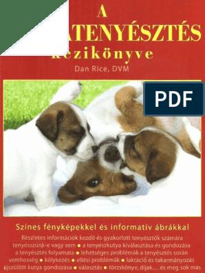 a kutyának merevedése van)