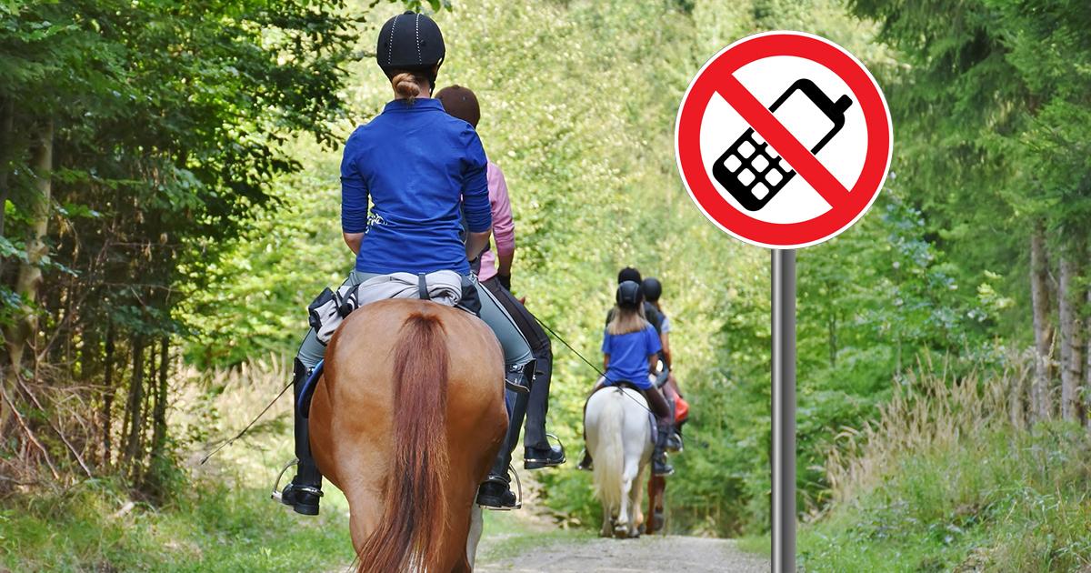 erekció lovaglás közben)