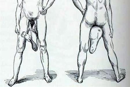 férfi két pénisz)