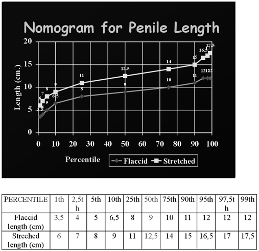 a pénisz átlagos hossza és vastagsága)