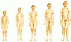 Tényleg összemegy a férfiak nemi szerve a hideg vízben? - Útikalauz anatómiába