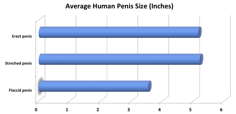 erekciót fokozó növények férfiak kis péniszekkel
