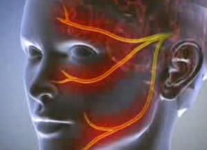 A Micropenis Új Sebészeti Technikával Bővült