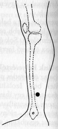 akupunktúrás pontok pénisz)