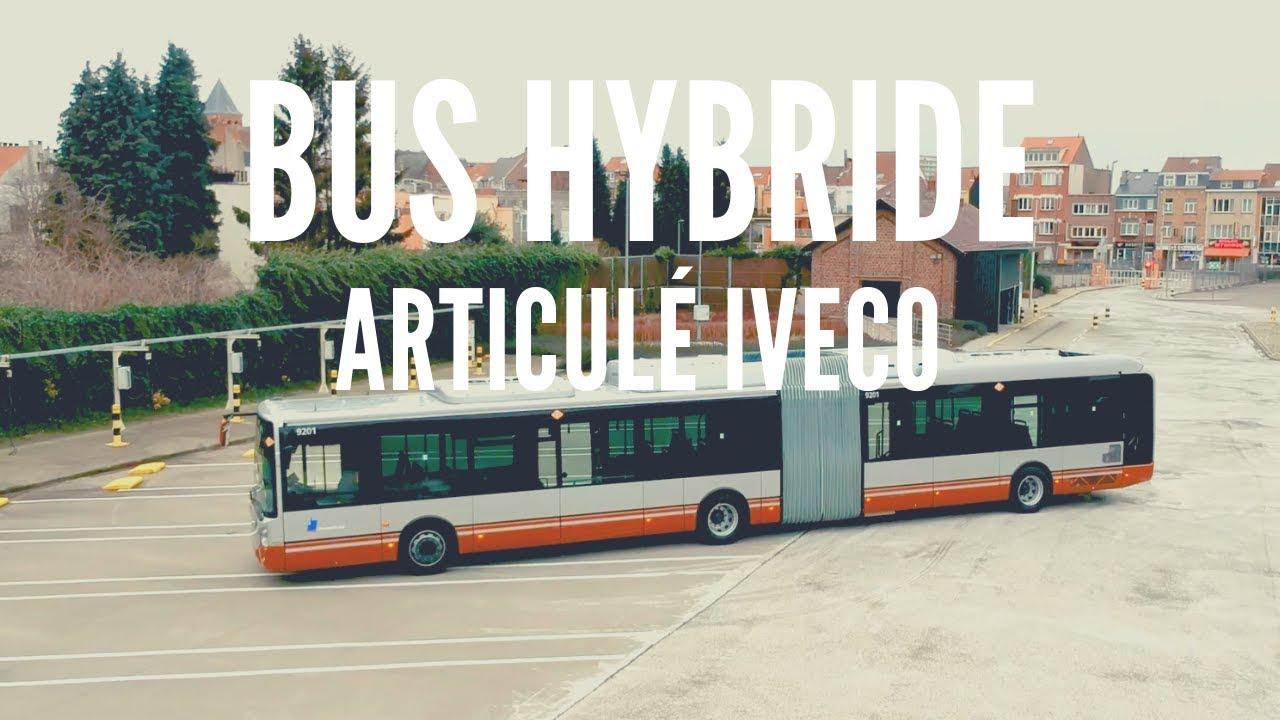 pufók busz videó