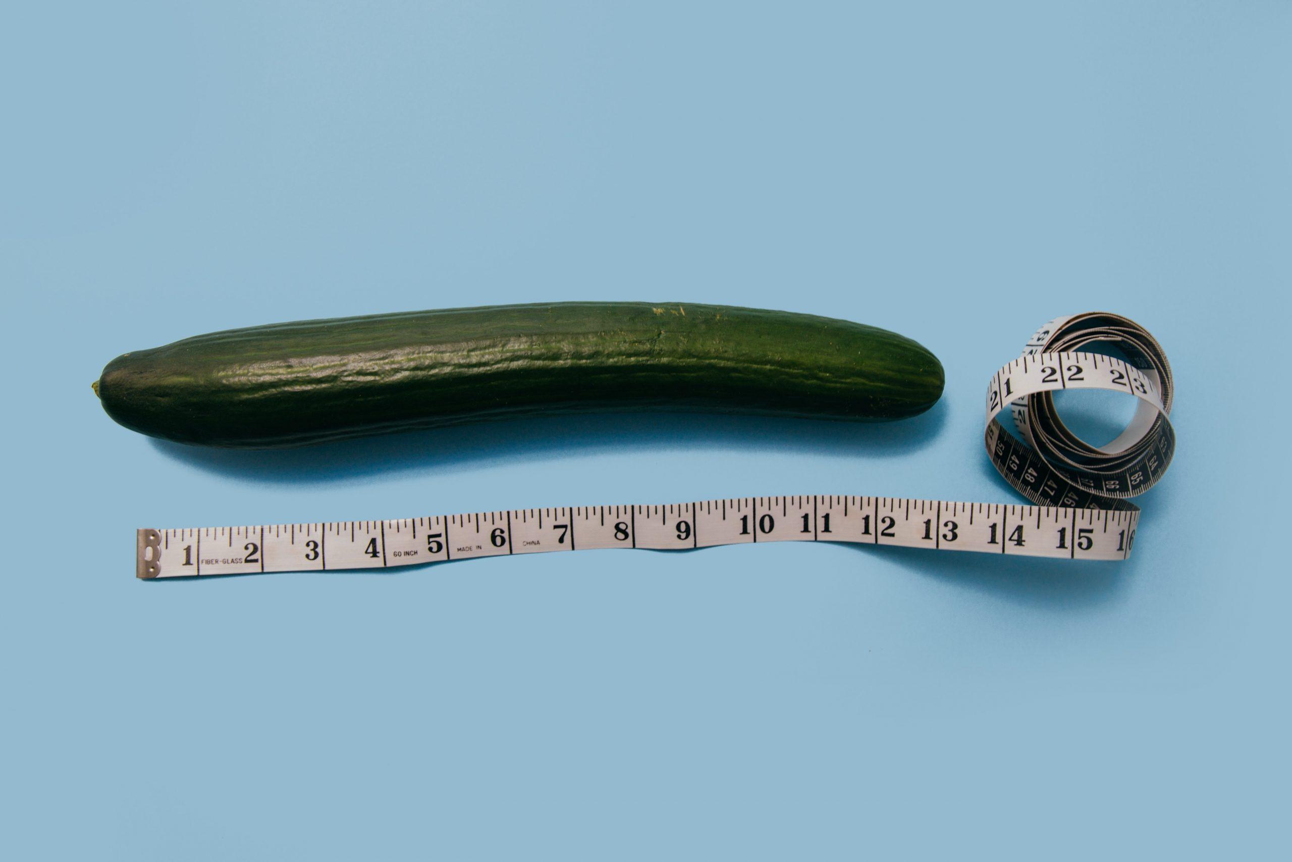 hosszúságú pénisz)
